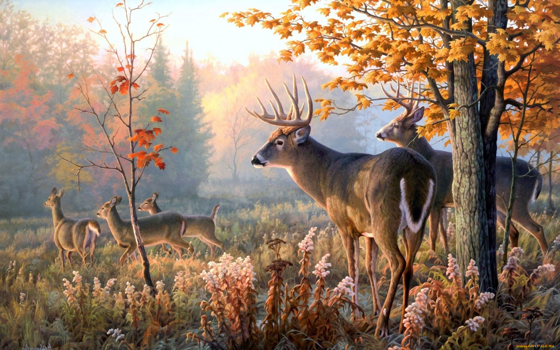 Картинка осенний лес и звери